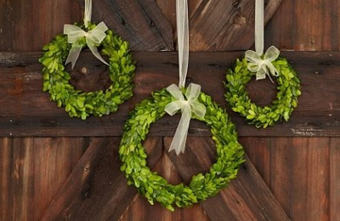 preserved-boxwood-wreaths-with-ribbon-trim-decor-steals-9_3